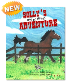 NEW Sollys not so great Adventure
